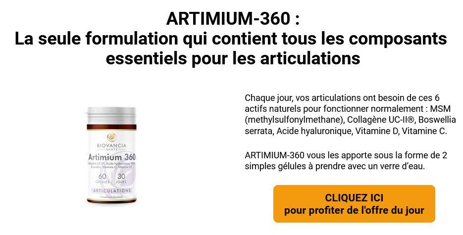 Artimium 360 2
