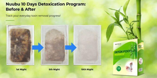 Nuubu Detox Patch 2