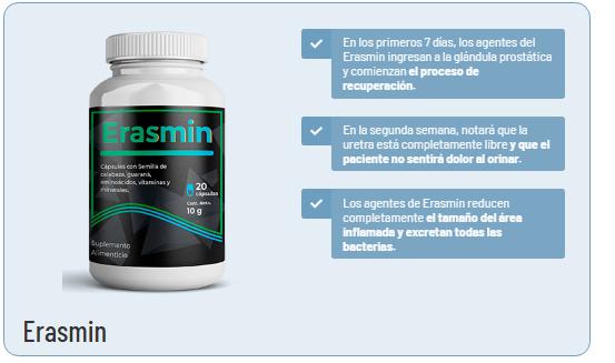 Erasmin.2